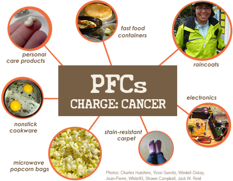 What are Perflourinated Compounds (PFCs)?